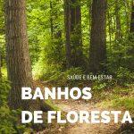 Banhos de floresta 🌲 🍂 🌳