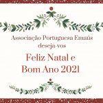 Feliz Natal e Feliz Ano Novo!